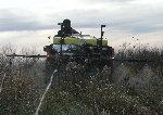 Spraying Fall 2007